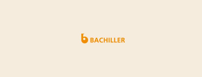 Creación d'una página web para Bachiller