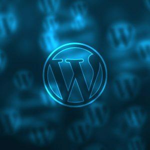 Nuevo servicio: mantenimiento semestral web - Wordpress